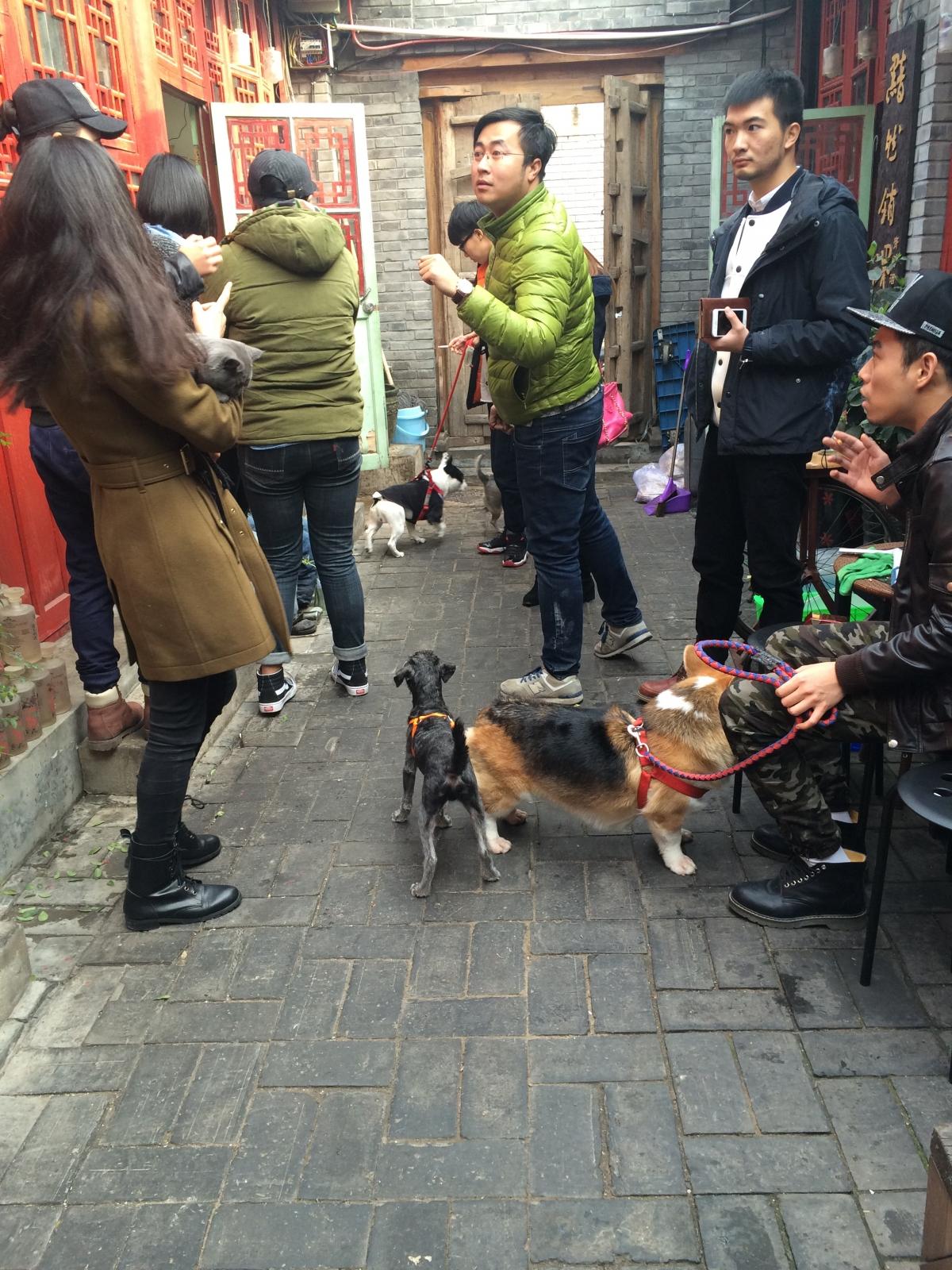 iHomo event in Beijing
