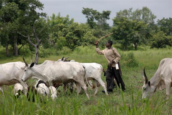 Fulani herdsmen Nigeria