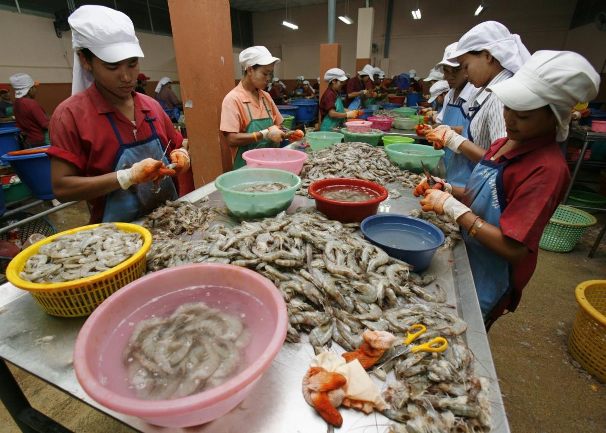 shrimp workers thailand