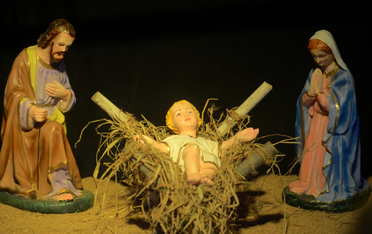 Sheep takes baby Jesus in children's nativity scene