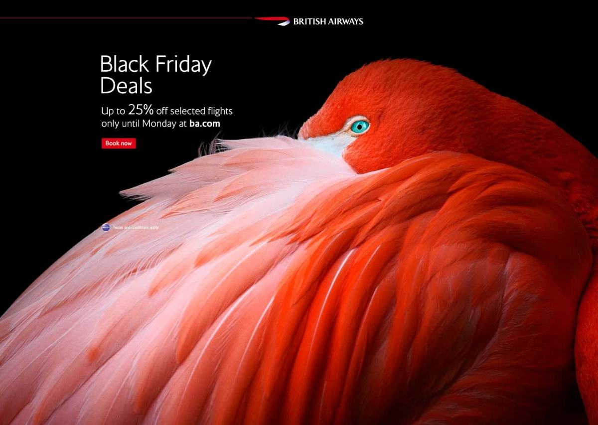 Black Friday Luxury Discounts