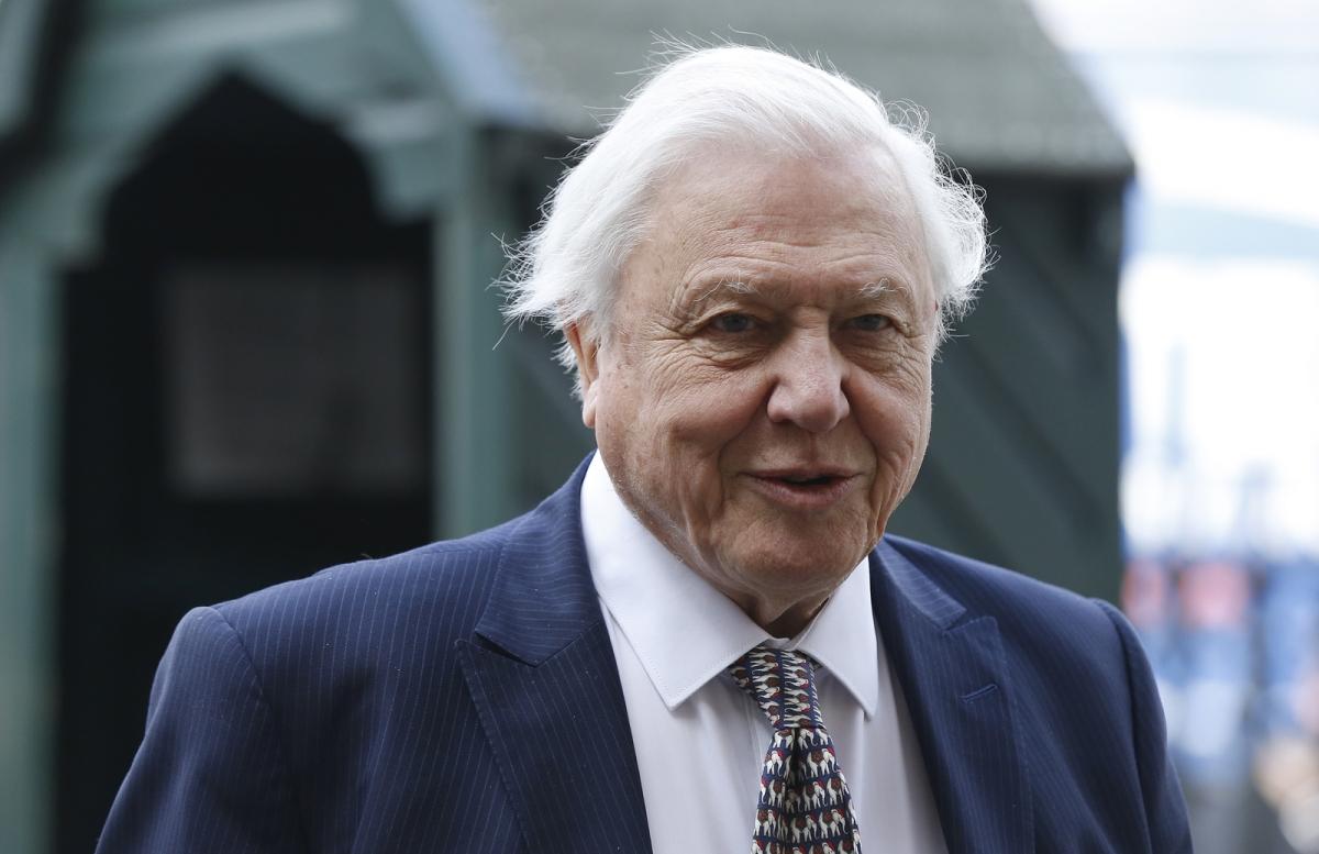 David Attenborough March 2015