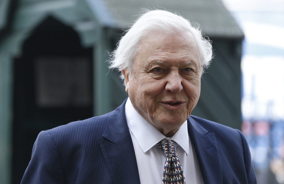 David Attenborough March 2015