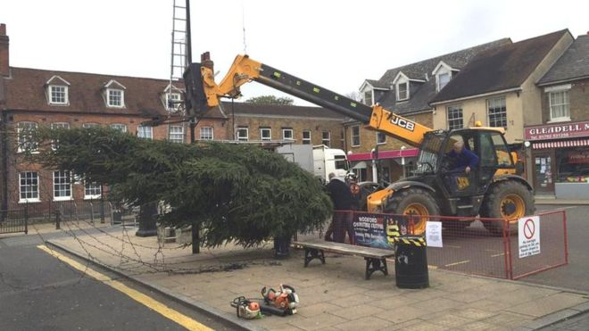 Christmas tree chopped with chainsaw