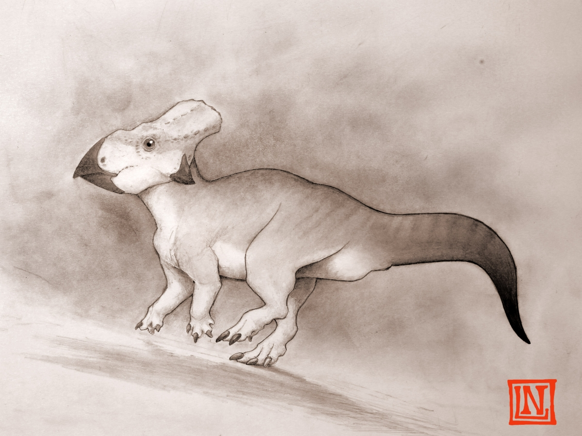 sheep sized dinosaur lost continent
