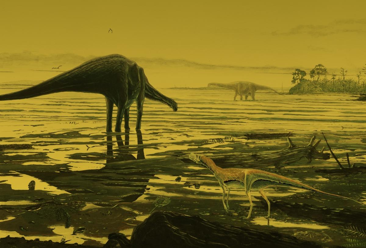 Sauropod tracks isle of skye
