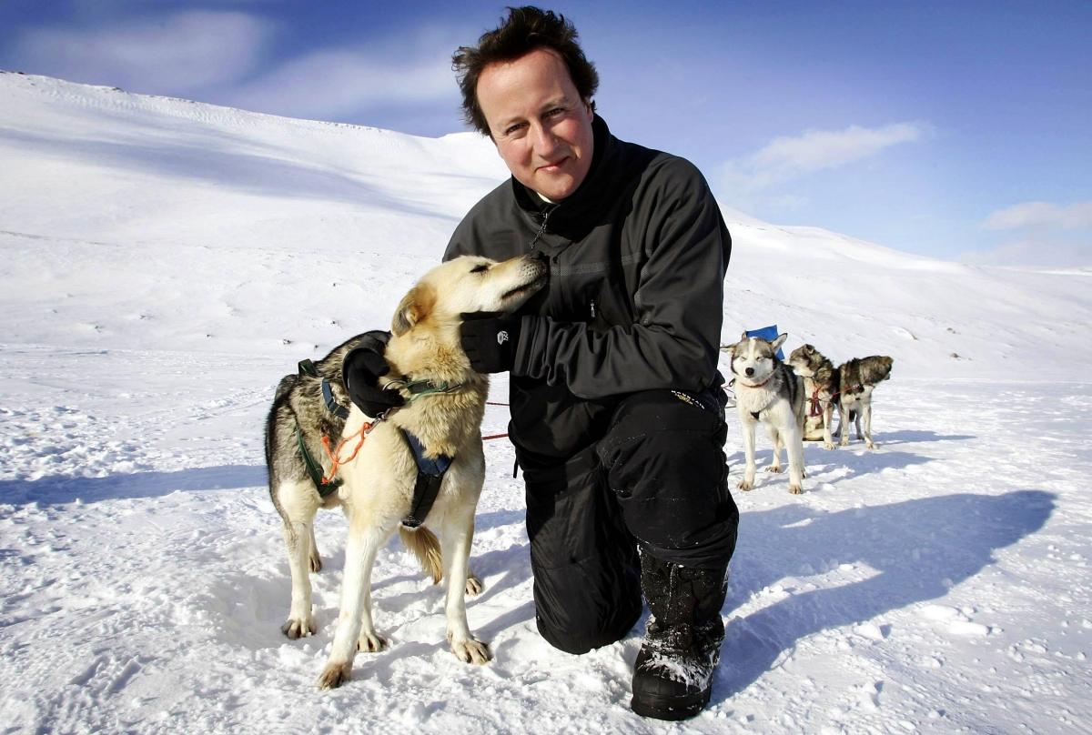 David Cameron hugging a husky
