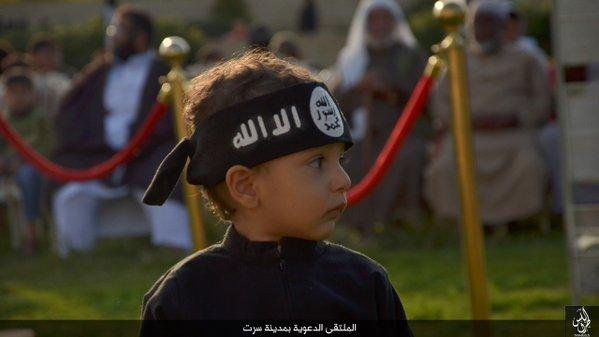 Caliphate cub