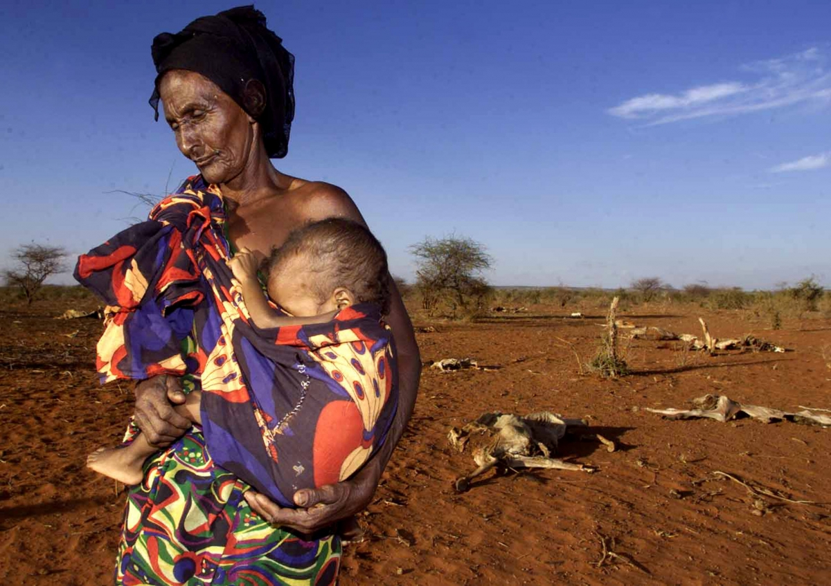 ethiopia 10 million at risk of starvation as east africa