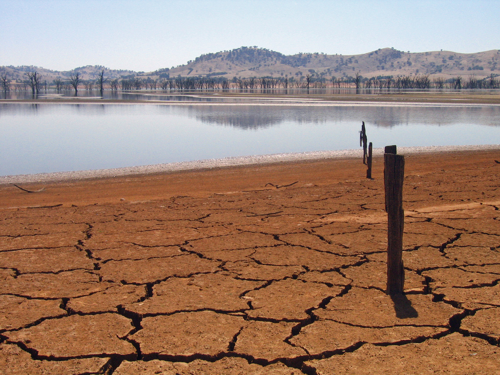 Drought in Lake Hume