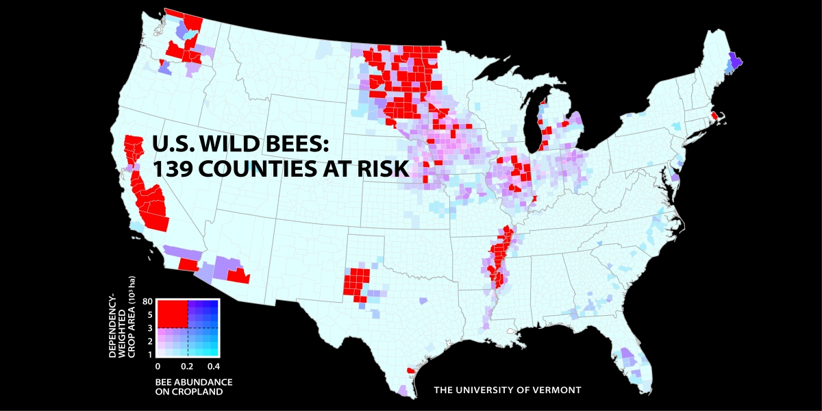 Bee Counties at Risk