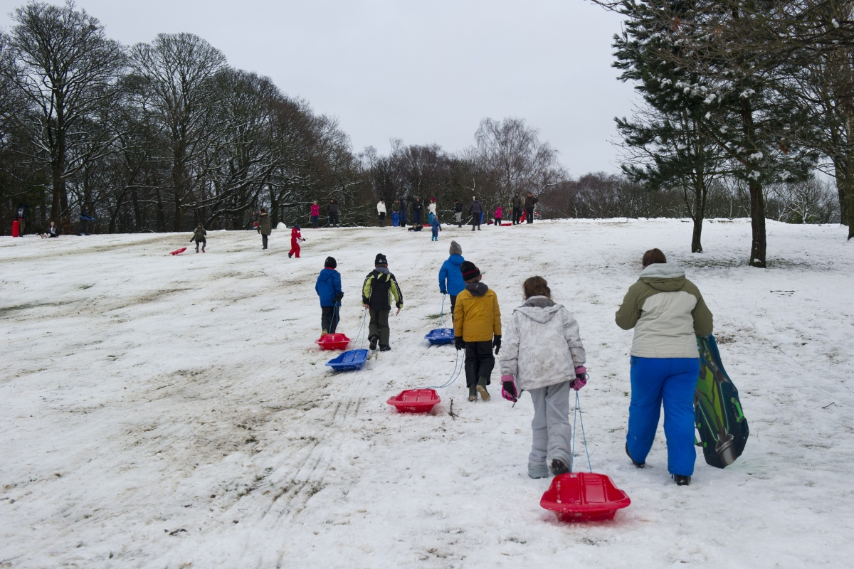 Snow and play