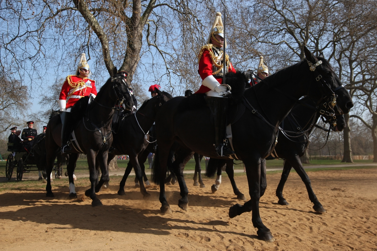 military horses hyde park