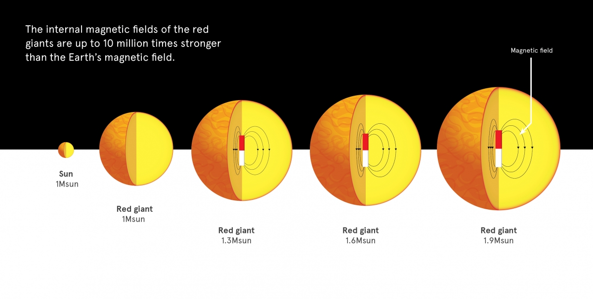 Magnetic fields in red giants