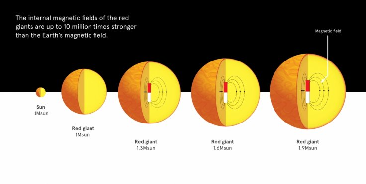 Magnetic fields in red giants