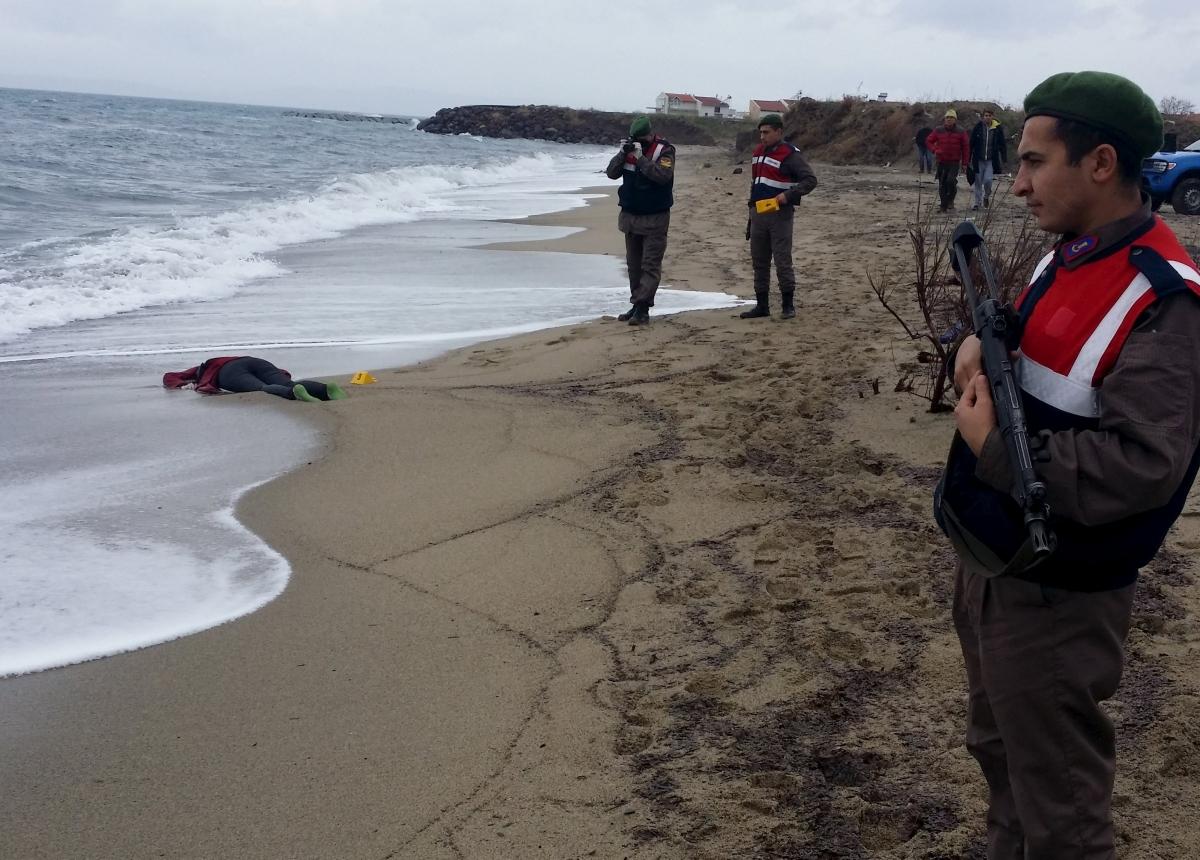Refugees wash up on shore