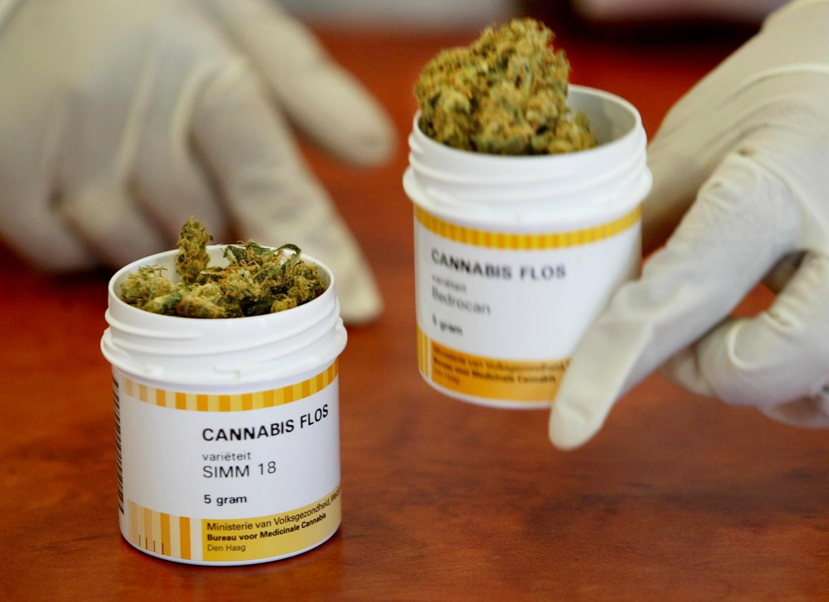 Cannabis used in science
