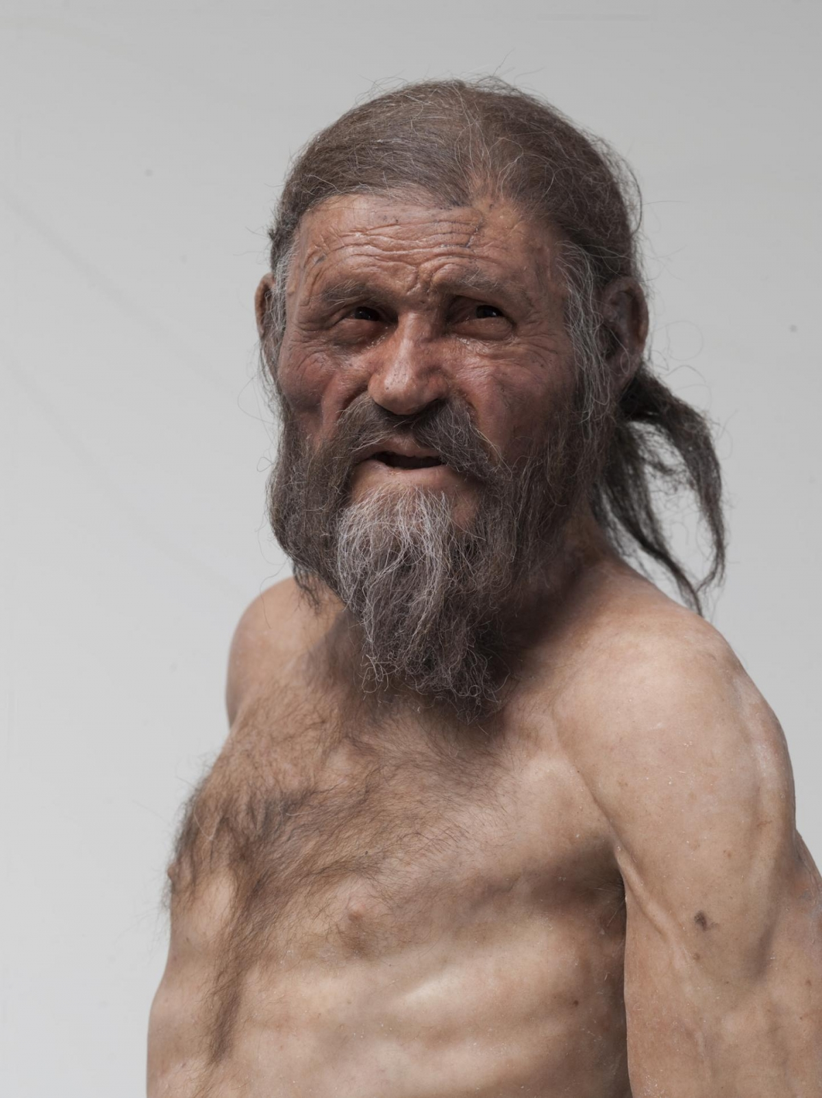 Reconstructed Otzi the Iceman