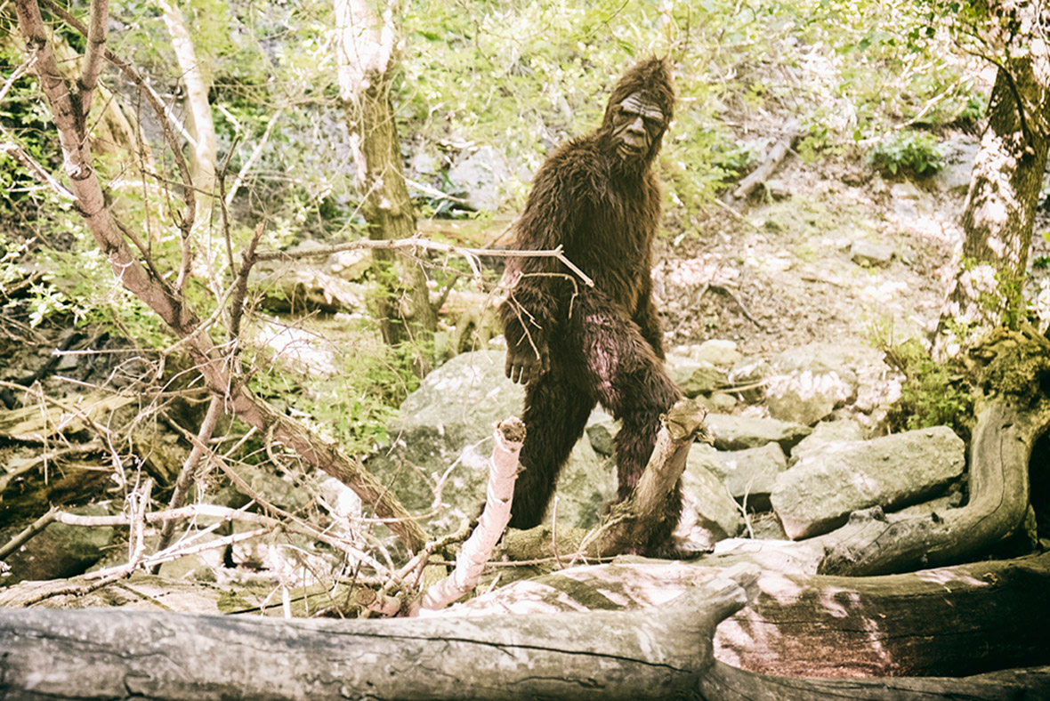From bosons to Bigfoot: Six science mysteries that might ...