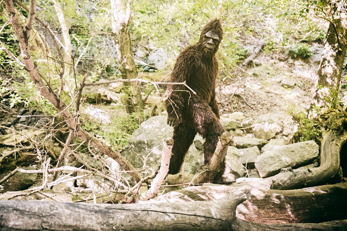 Bigfoot Pics - The BodyProud Initiative