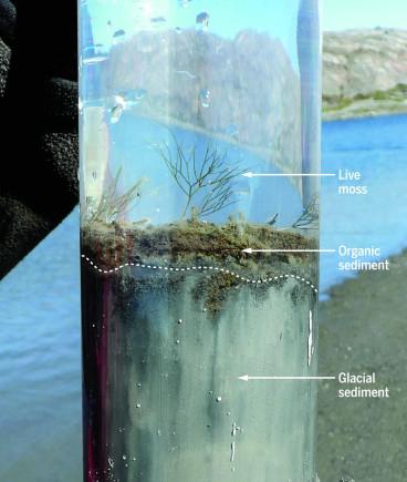 Anthropocene sediment core