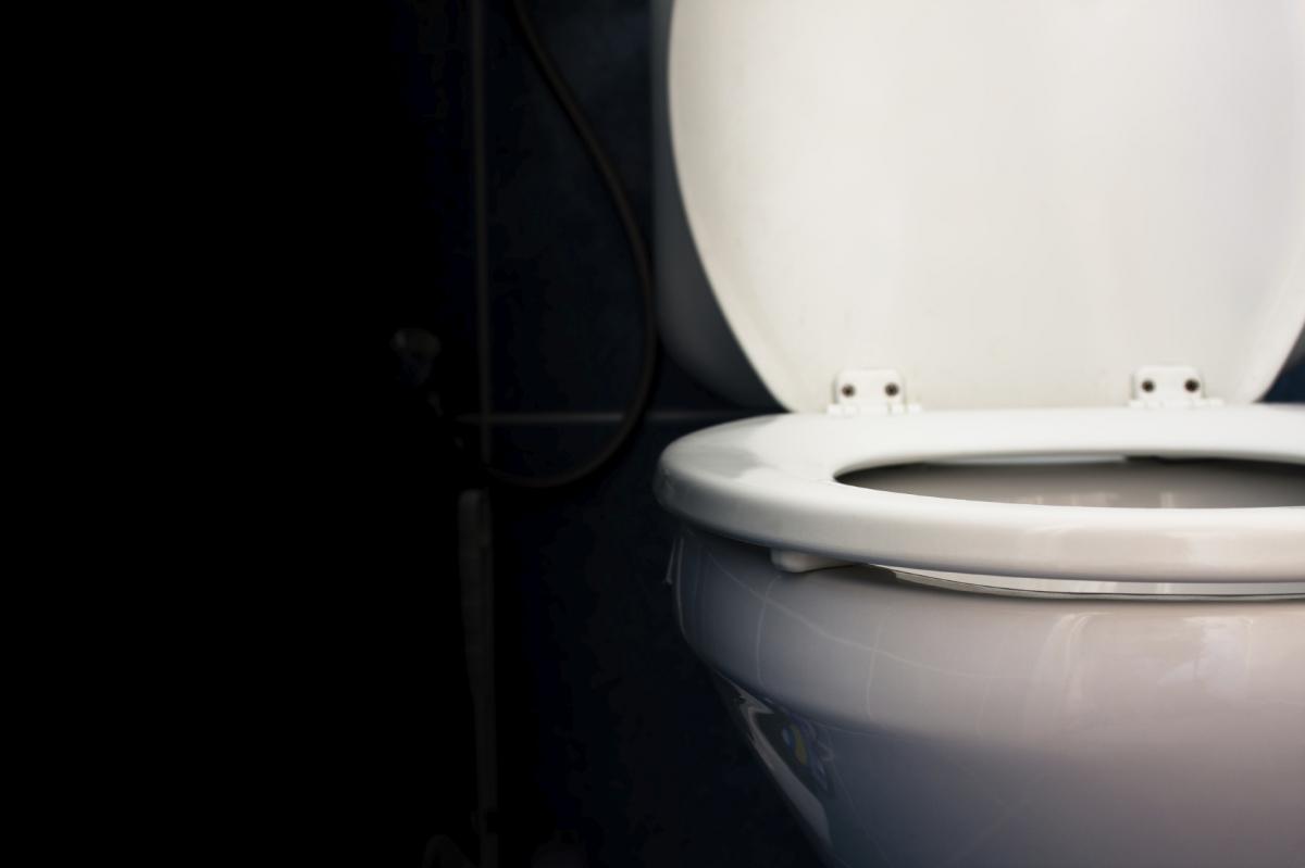 toilet poo transplant