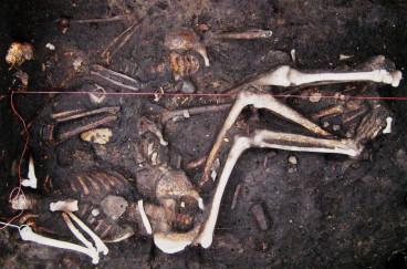 Samples of plague victims