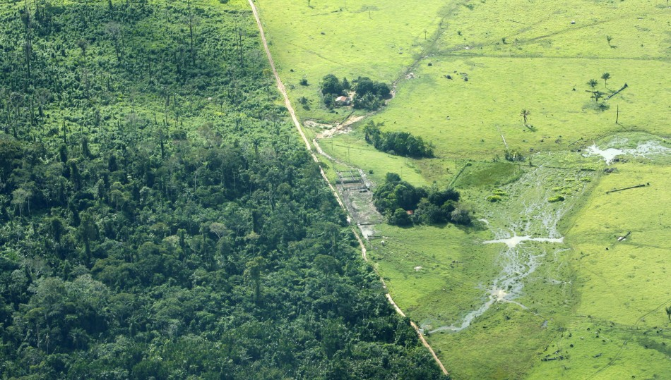 An aerial view of cattle farm is seen in an Amazonian deforested jungle close to Maraba, in Brazil's central state of Para in this May 3, 2009