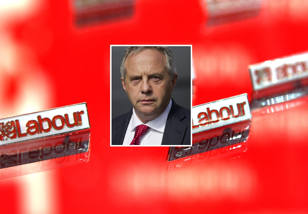 John Mann, Labour MP