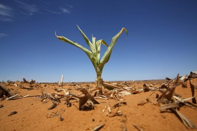 South Africa drought