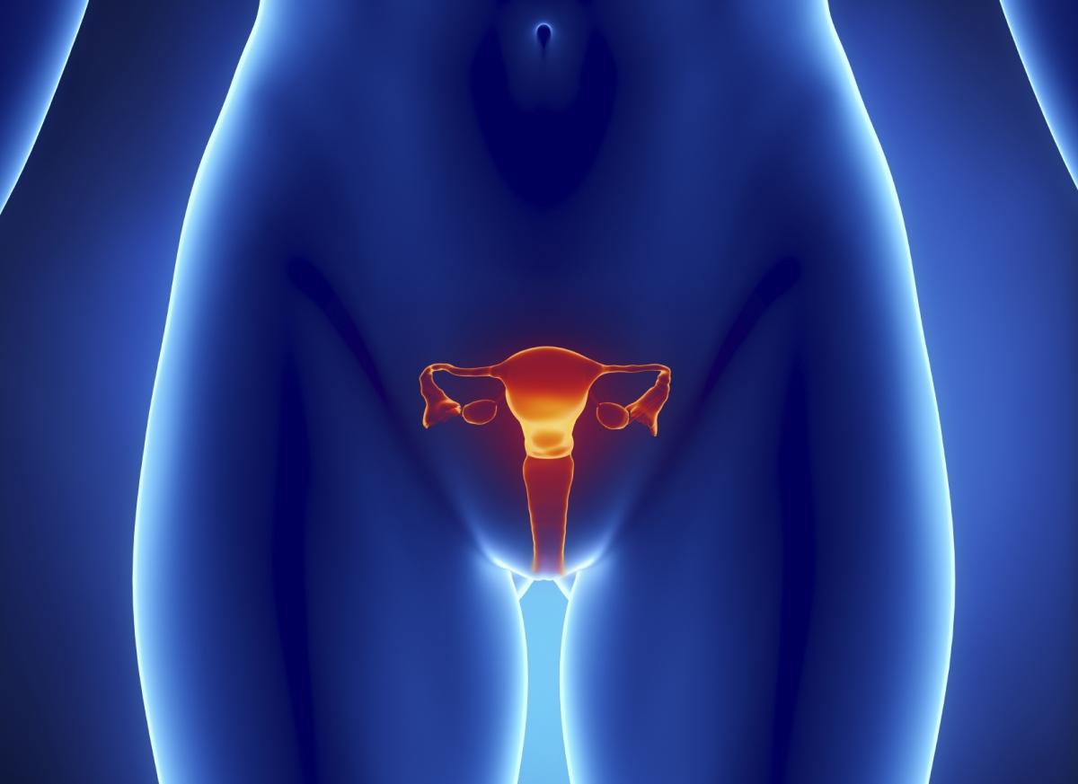 womb detox dangerous