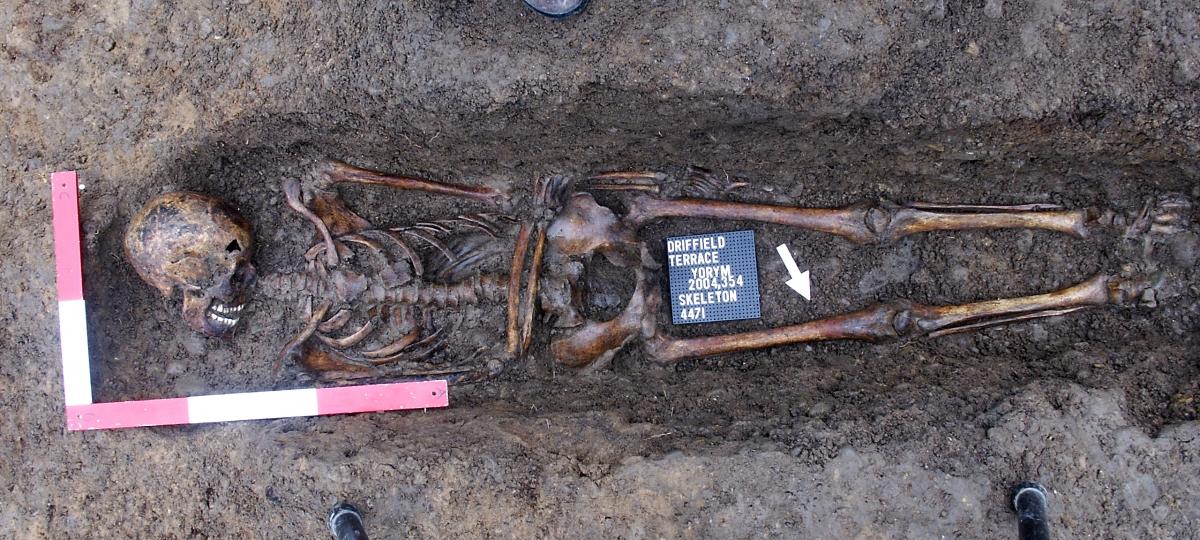 decapitated roman gladiator