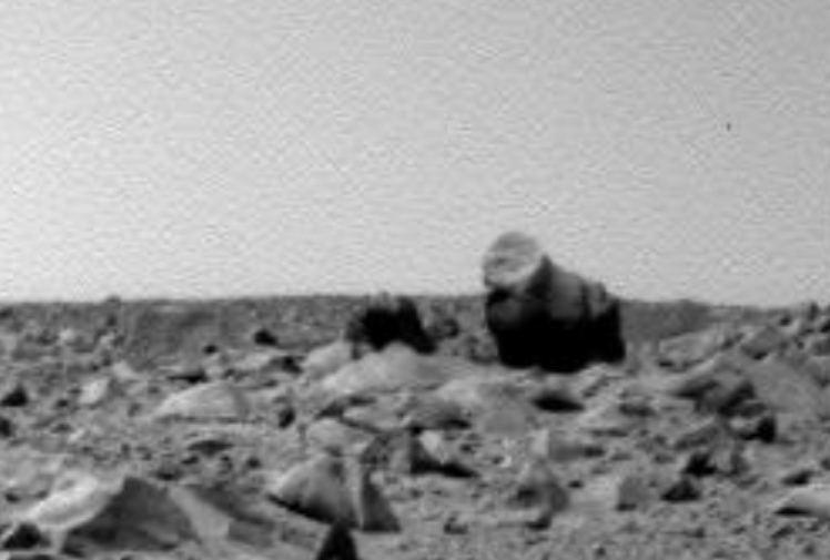 Mars Rover gorilla bear camel