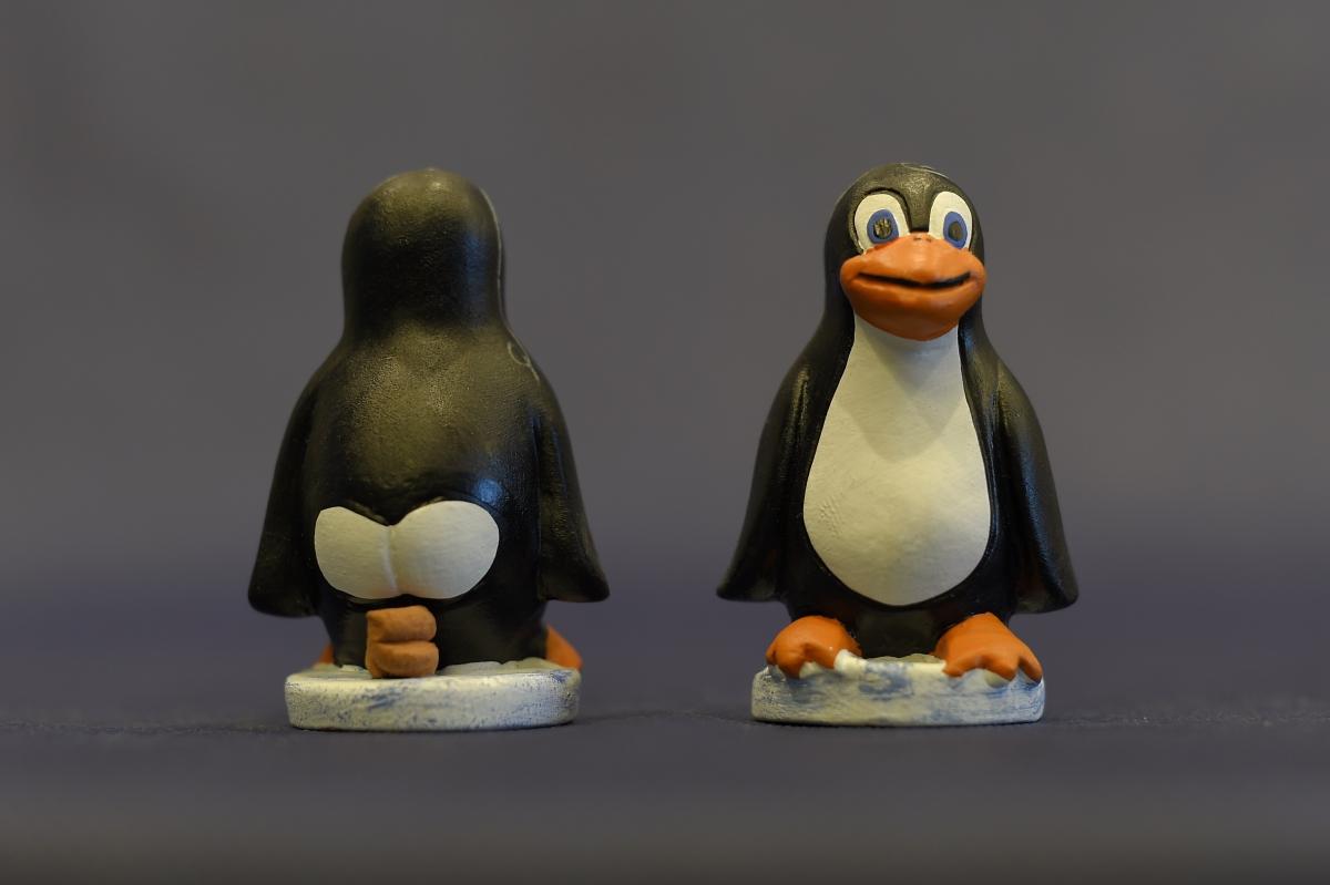 Zero-day vulnerability in Linux kernel