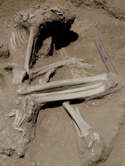 Hunter-gatherer massacre