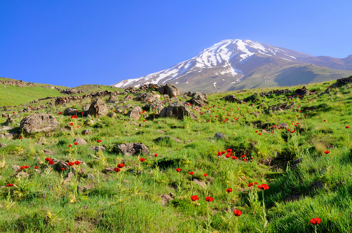 iran tourism  30 photos of the beautiful country as