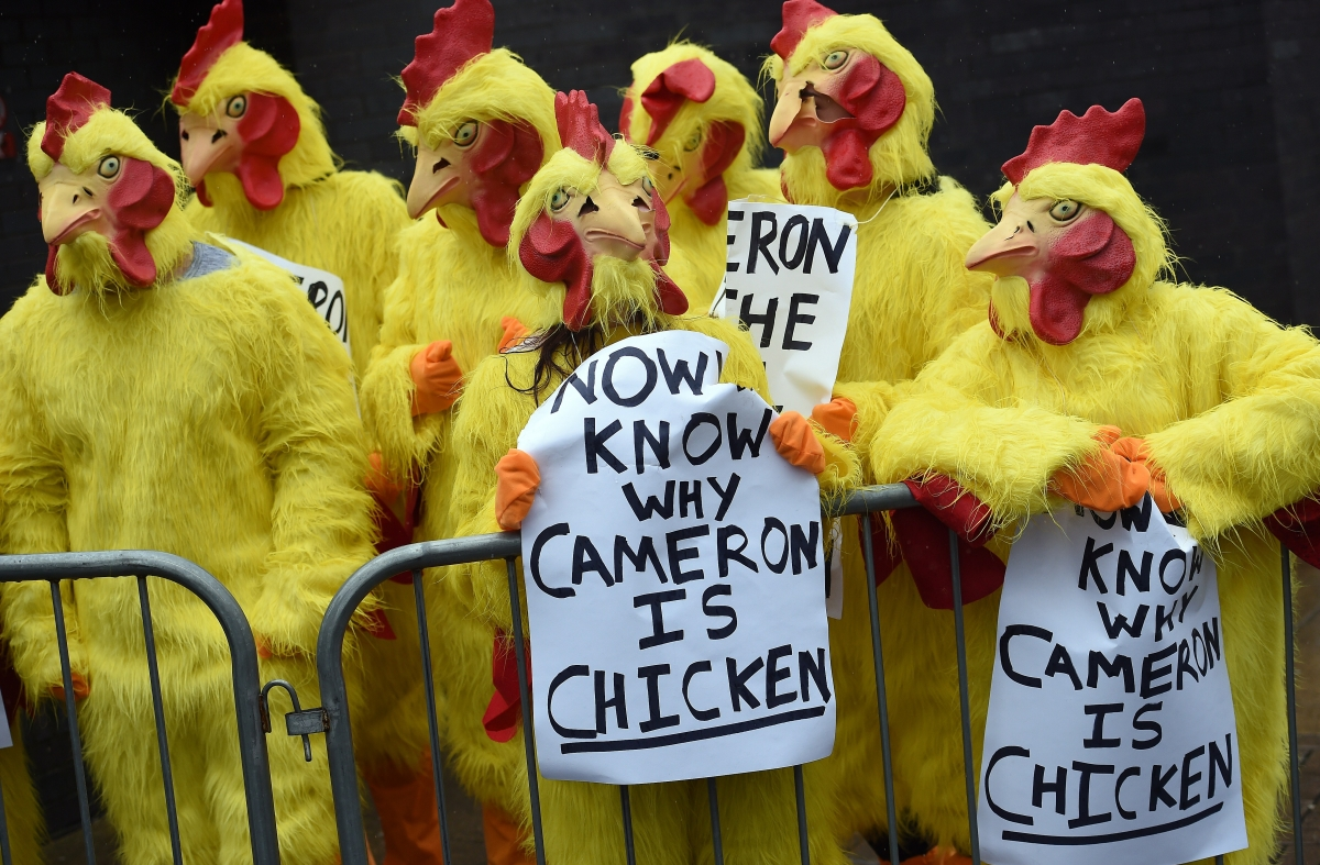 Protesters in chicken suits during the election