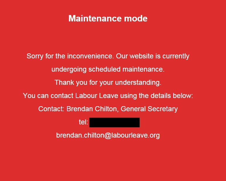 Labour Leave website