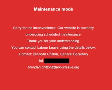 Labour Leave website