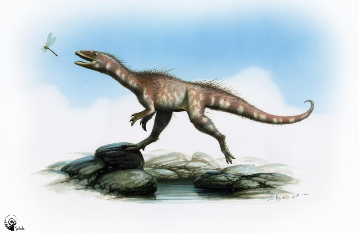 Representation of Dracoraptor hanigani