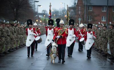 Royal Welsh regimental goat Fusilier Llywelyn