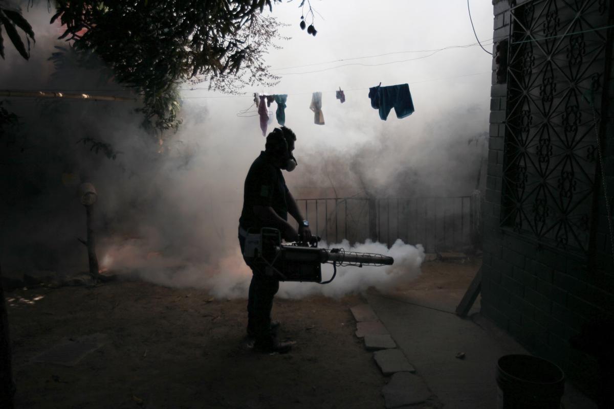 Fumigating the Zika virus