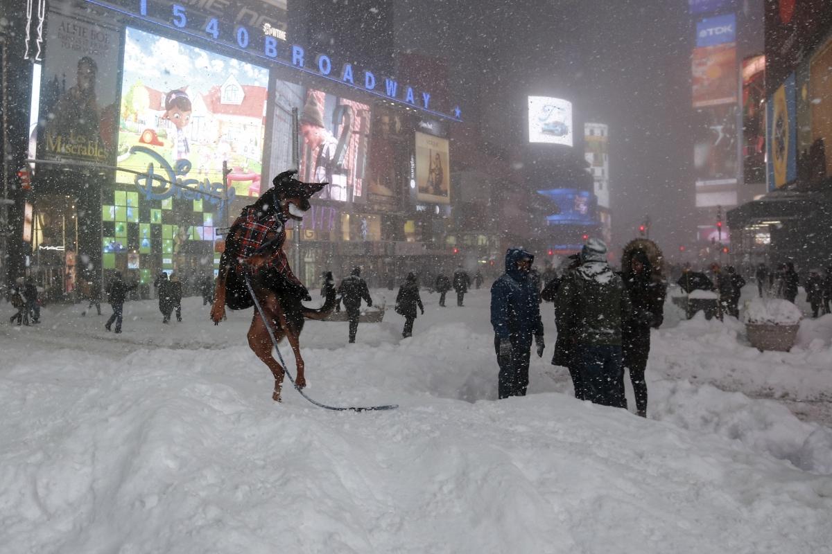 New York in snow