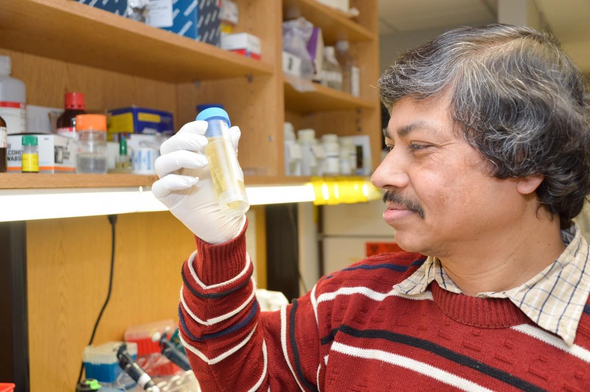 Swapan Nath lupus genes