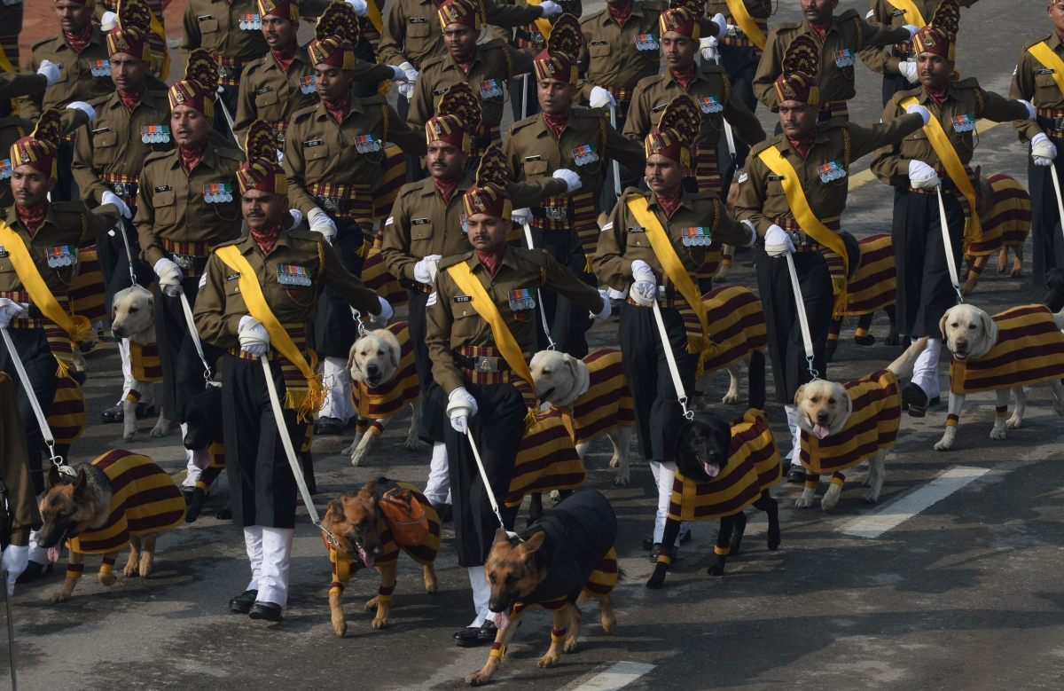 India Republic Day Parade, dogs