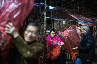 chinese new year preparations