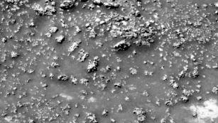 life mars silica formation