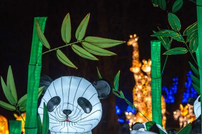 Chiswick Lantern Festival