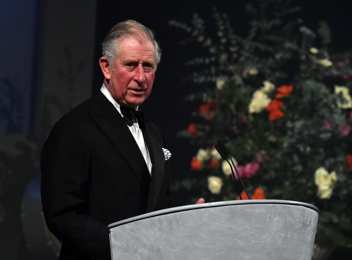 Prince Charles at British Asian Trust gala