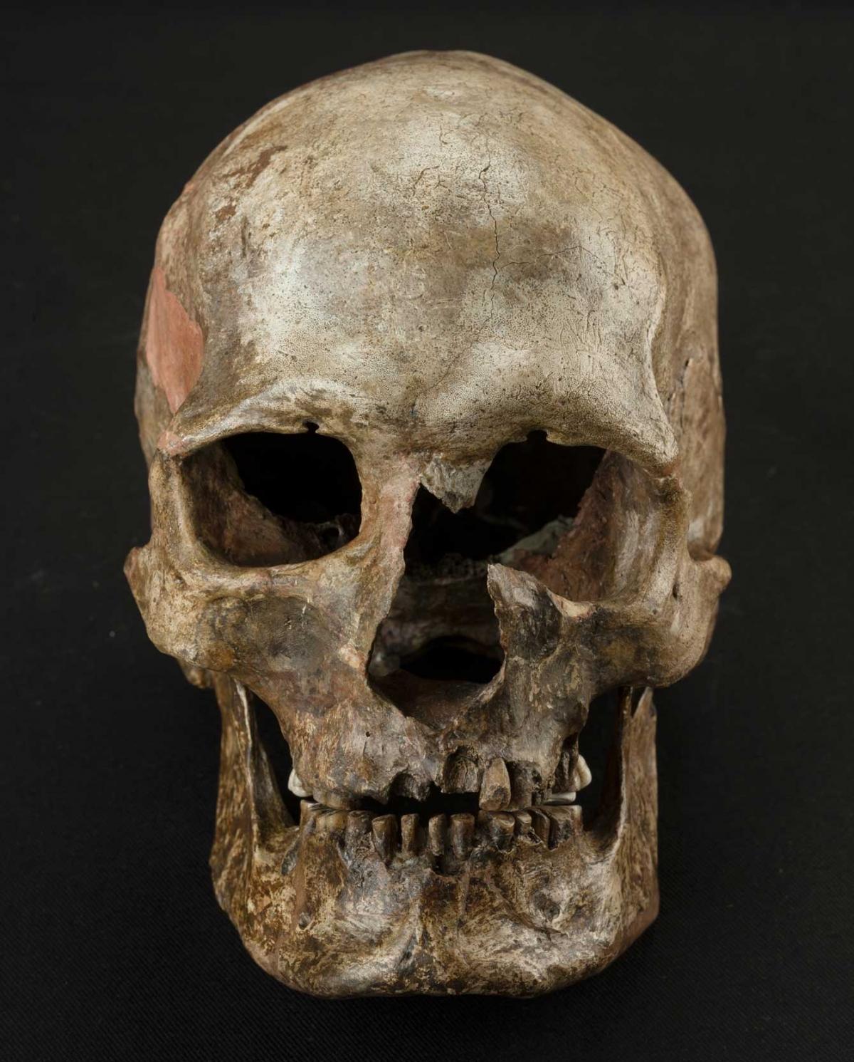 Dolnte Vestonice burial 16, South Moravia, Czech Republic